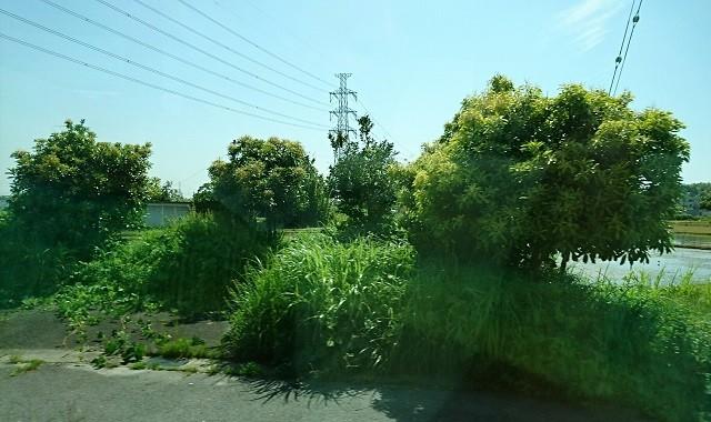 2018.5.25 日進中央線 (37) 岩崎大塚バス停 640-380