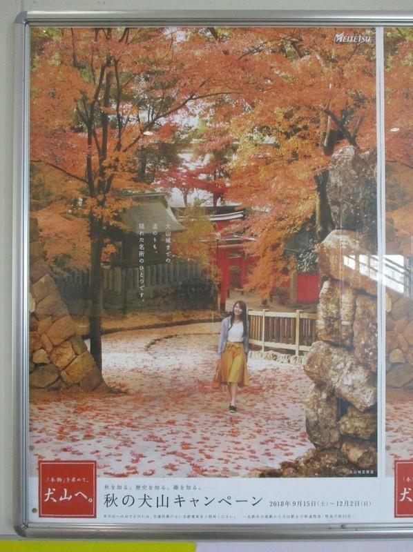 2018.11.11 (1) 桜井 - あきの犬山キャンペーン 1390-1860