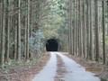 2018.11.17 (159) トンネル 1200-900