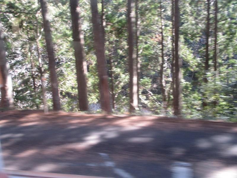 2019.1.24 (41) 飯田いき特急伊那路 - 三河大野湯谷温泉間 800-600