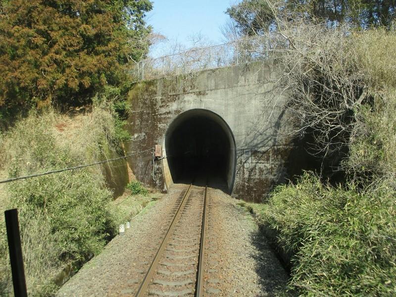 2019.3.1 (98) 樽見いきふつう - 日当高尾間(トンネル) 1800-1350