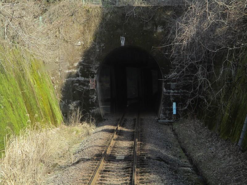 2019.3.1 (109) 樽見いきふつう - 水鳥樽見間(トンネル) 1800-1350