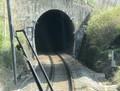 2019.4.4 (42) 下呂いきふつう - こび中川辺間(トンネル) 1500-1140