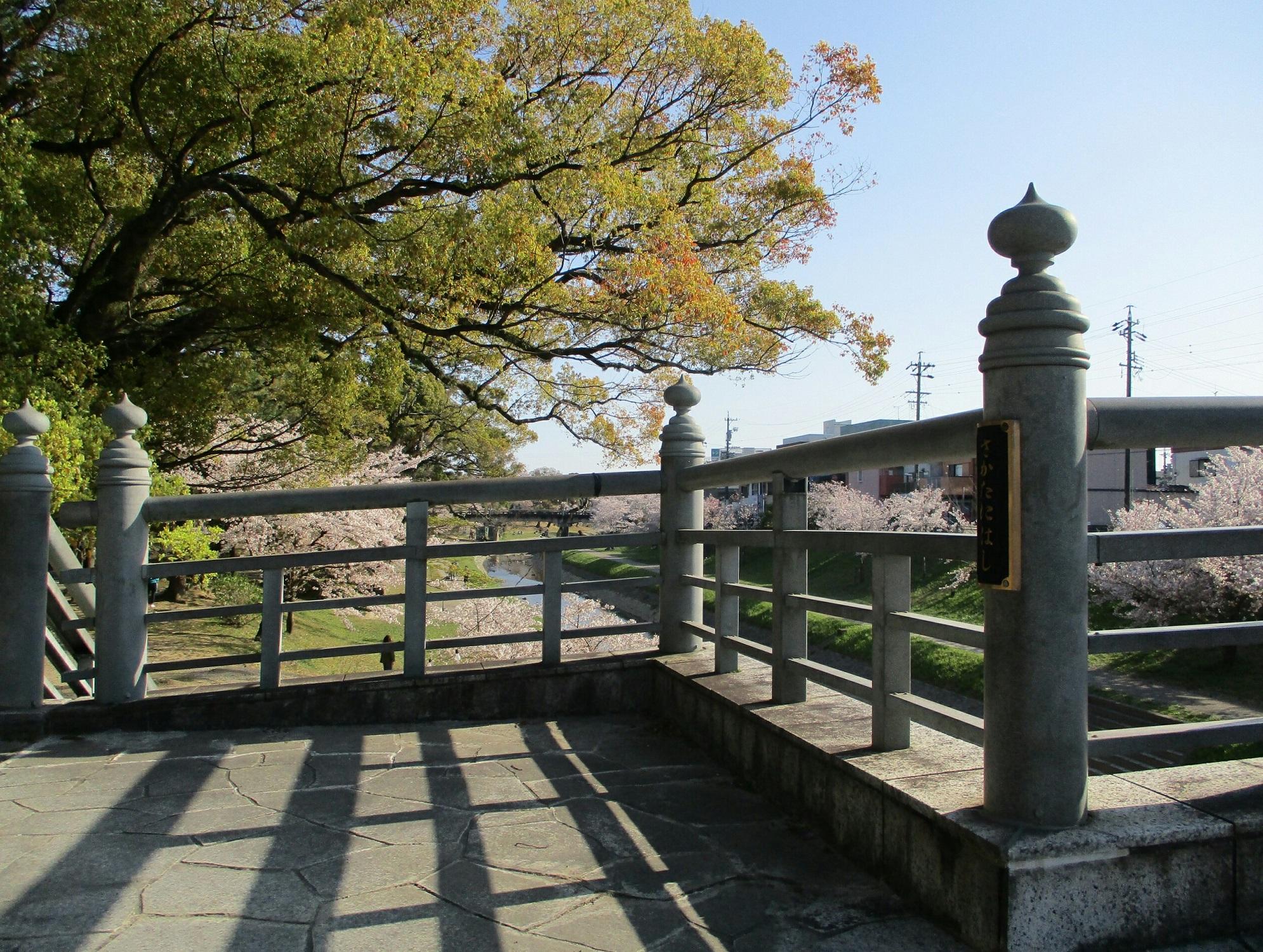 2019.4.9 (31) 岡崎公園 - 坂谷橋 1990-1500