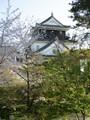 2019.4.9 (32) 岡崎公園 - 岡崎城 1500-2000