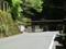 2019.5.2 (12) 佐久間 - 下日余(しもひよ)バス停 1600-1200