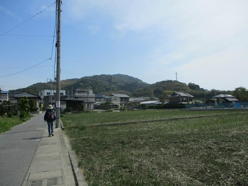 2019.5.3 (24) はずゆめヲーク - 西幡豆駅-竜蔵院間 1600-1200