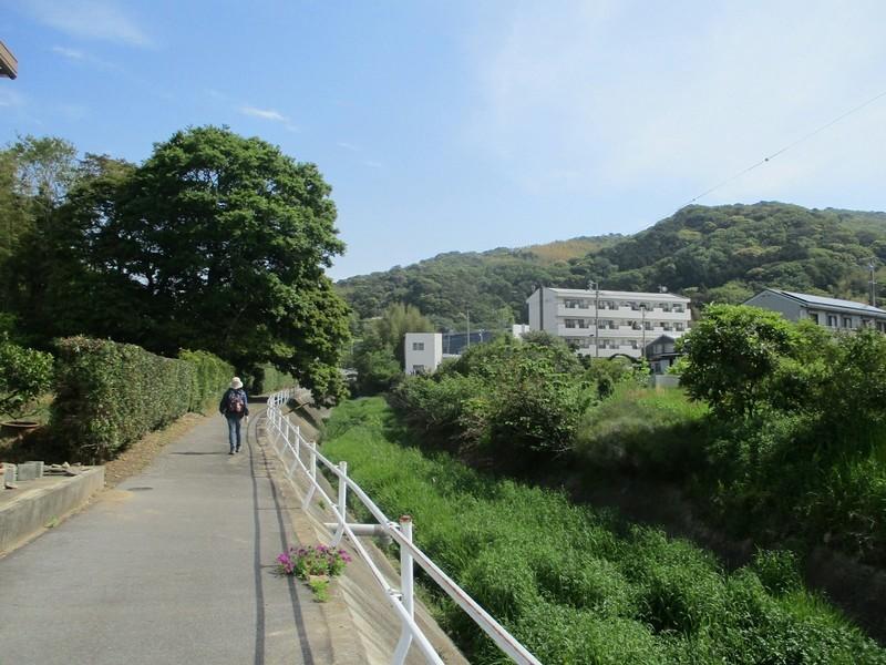 2019.5.3 (25) はずゆめヲーク - 西幡豆駅-竜蔵院間 1600-1200