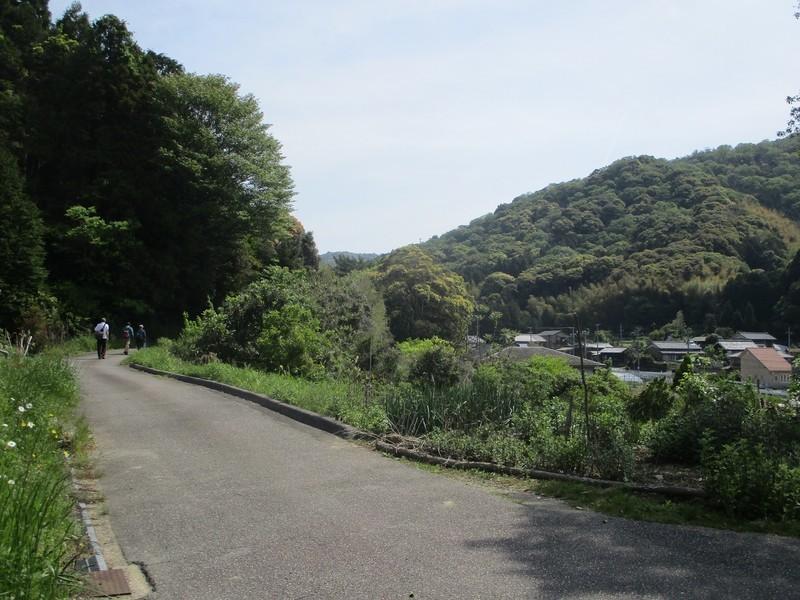 2019.5.3 (29) はずゆめヲーク - 西幡豆駅-竜蔵院間 1600-1200