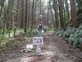 2019.5.3 (43) はずゆめヲーク - 小野小桜やしき 2000-1500