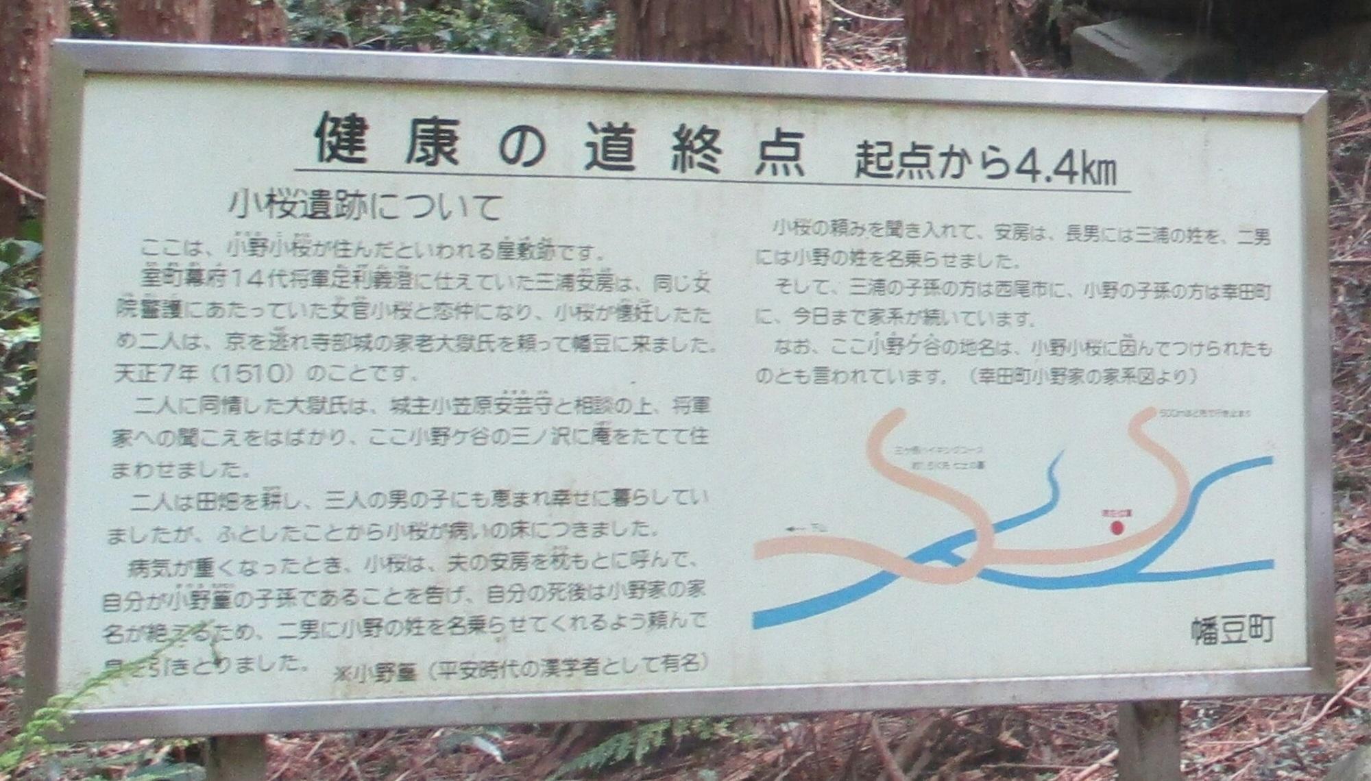 2019.5.3 (44-1) はずゆめヲーク - 小野小桜やしき 2000-1140