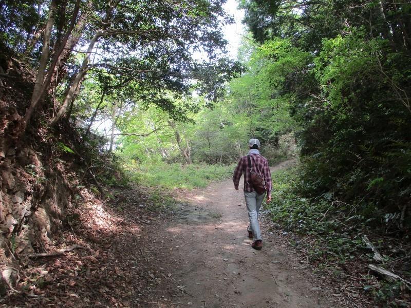 2019.5.3 (48) はずゆめヲーク - 小野小桜やしき-殉国七士墓間 1600-1200
