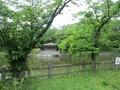 2019.5.16 (42) 亀城公園 - 城池 1600-1200
