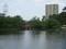2019.5.16 (43) 亀城公園 - 城池 1600-1200