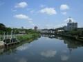 2019.6.11 (5) 堀川 - 白鳥橋からかわかみをみる 2000-1500