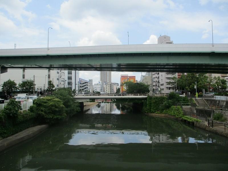2019.6.11 (51) 堀川 - 洲崎橋からかわかみをみる 2000-1500