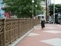 2019.6.11 (70) 堀川 - 納屋橋 2000-1500