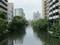 2019.6.11 (80) 堀川 - 中橋からかわかみをみる 2000-1500