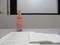 2019.8.18 (6) 岩瀬文庫 - 西尾市史講座「弥生時代の西尾」 2000-1500