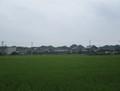 2019.8.20 (45) 美濃石田正専寺前間 - 木曽川堤防 1590-1200