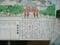 2019.8.28 (11) 大須 - 大須観音説明がき 1600-1200