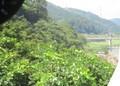 2019.9.4 (94) 加茂いきふつう - 大河原笠置間 1890-1350