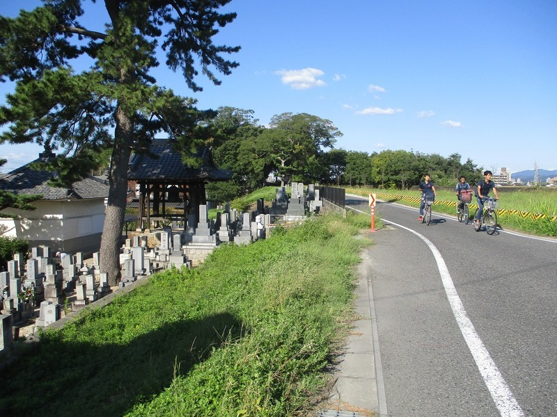 2019.10.15 (18) 矢作 - 正蓮寺 1600-1200