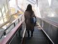 2020.1.21 (3) 豊橋 - 新幹線のりばエスカレーター 1960-1470