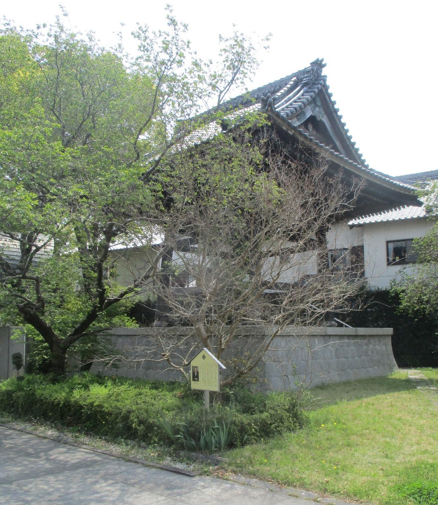2020.4.16 (8) 上宮寺 - ふだんざくらとさるすべり 1440-1660