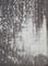 2020.6.10 (9-2) 薬師如来 - 愛汗のいしぶみ(みぎした) 1460-1980