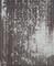 2020.6.10 (9-4) 薬師如来 - 愛汗のいしぶみ(ひだりした) 1610-1960