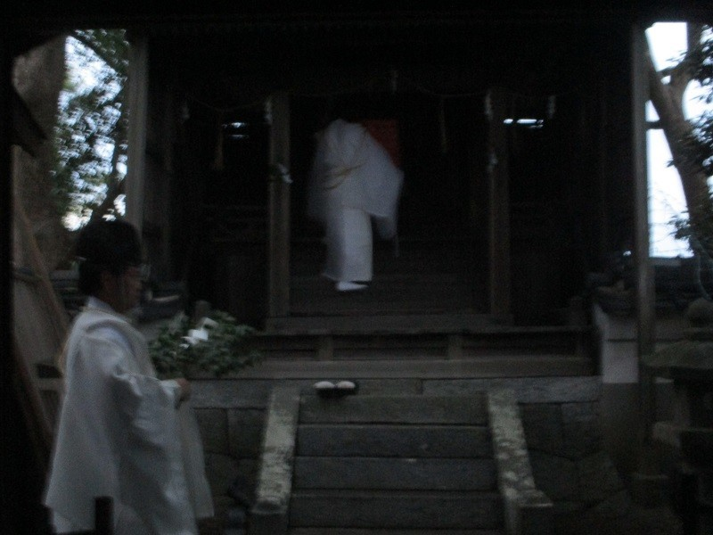 2020.6.27 (66) 桜本天神 - はこをはこびこむ 800-600