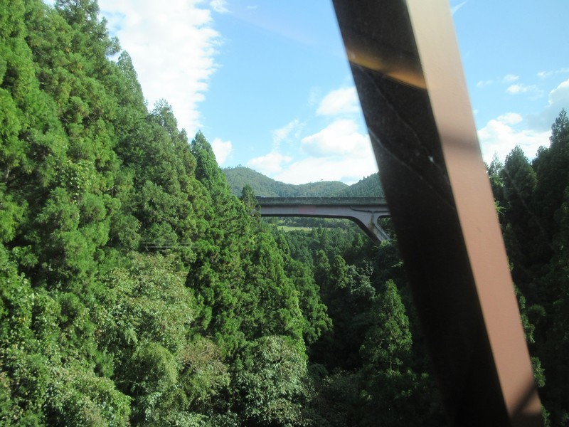 2020.10.6 (48) 福知山いききのさき3号 - 安栖里立木間 1600-1200