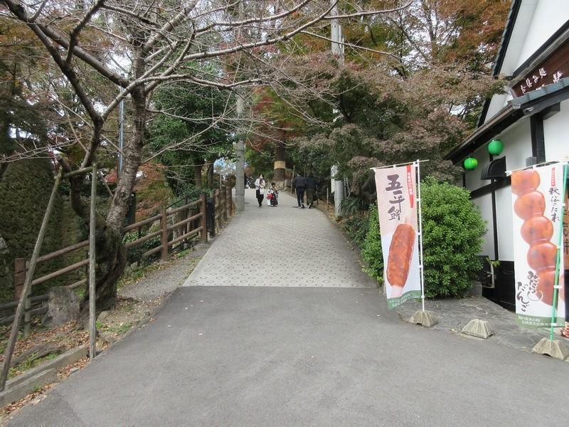 2020.11.29 (68) 岡崎城 - 竜城堀(清海堀つなぎ) 1600-1200