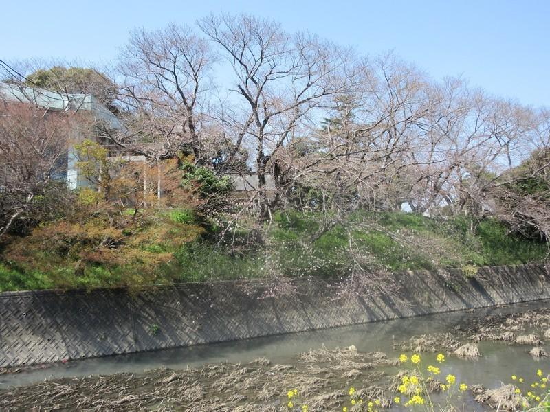 2021.3.23 (44) 上郷 - 上野城址 1600-1200