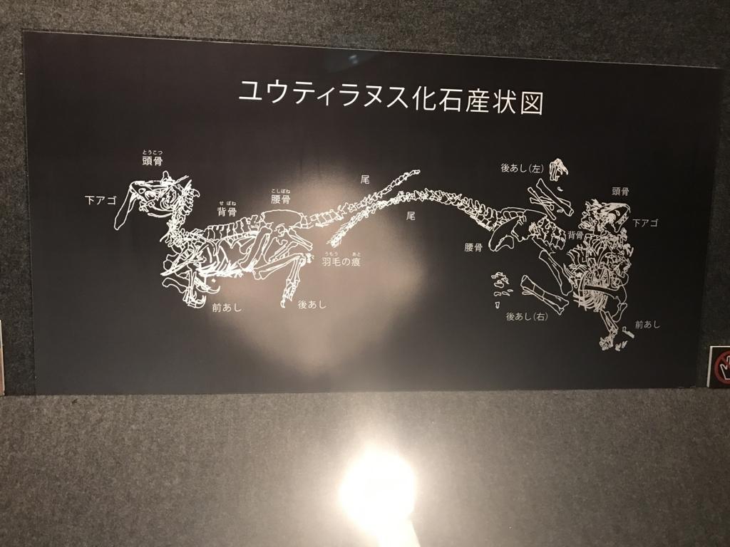 f:id:iwatako:20170611130810j:plain