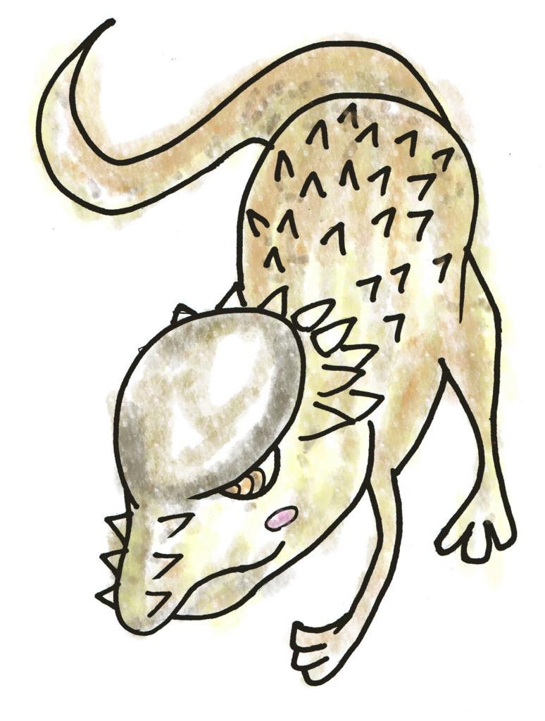 パキケファロサウルスイラスト