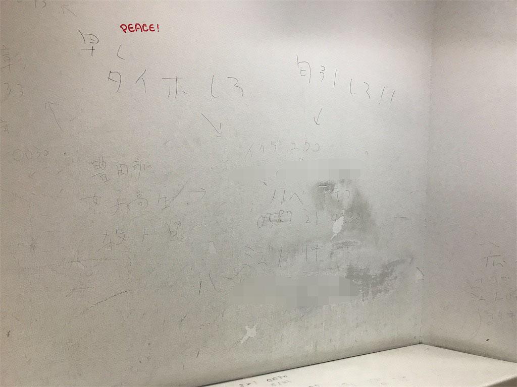 f:id:iwatako:20181020114943j:plain
