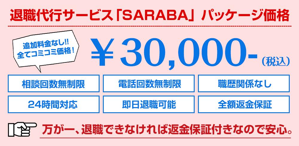 f:id:iwatako:20181229211110p:plain