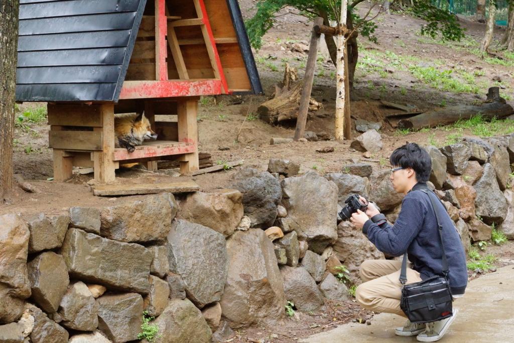 f:id:iwate-u_photo:20170615192956j:plain