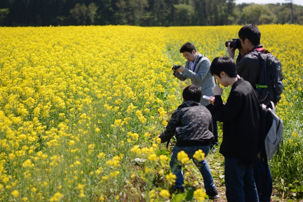 f:id:iwate-u_photo:20180523153420j:plain