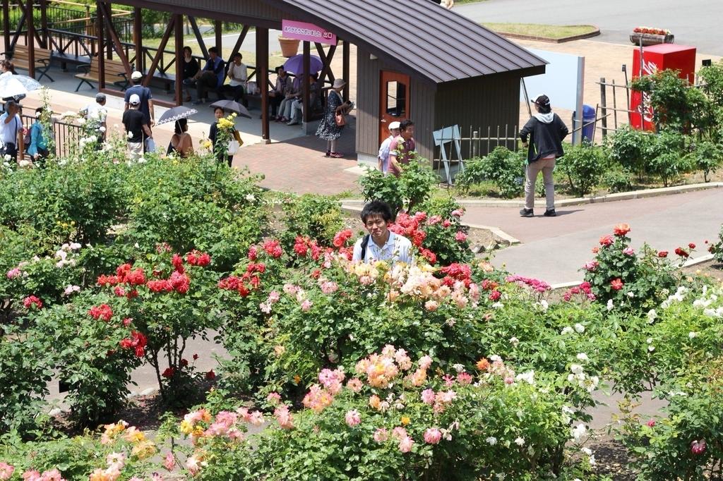 f:id:iwate-u_photo:20180918222356j:plain