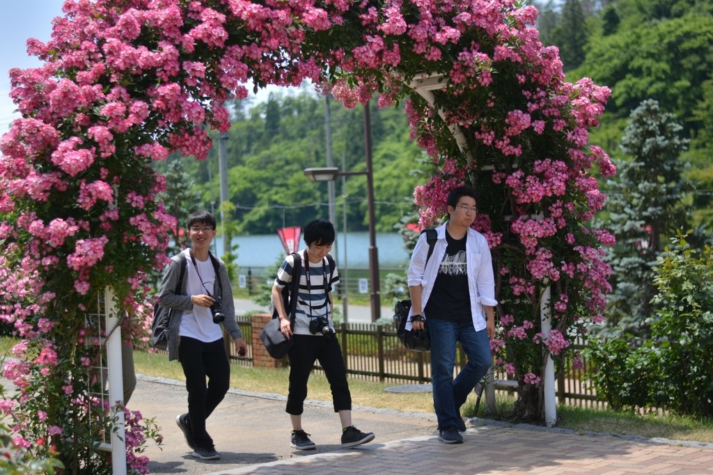 f:id:iwate-u_photo:20180920180704j:plain