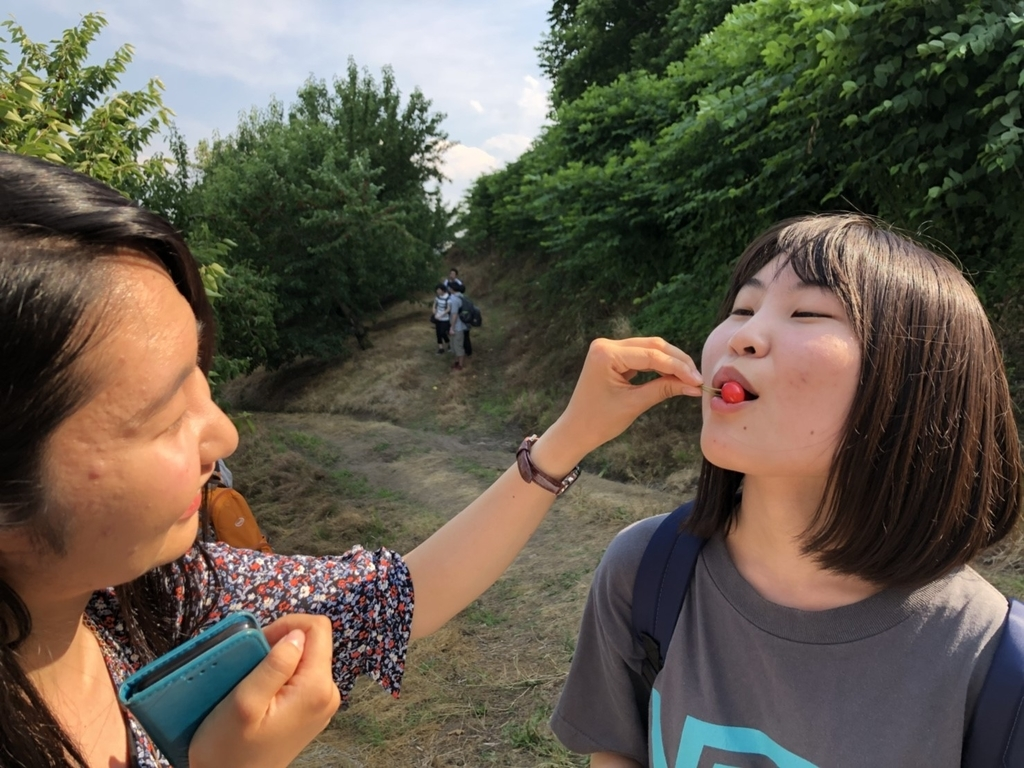 f:id:iwate-u_photo:20180920181056j:plain