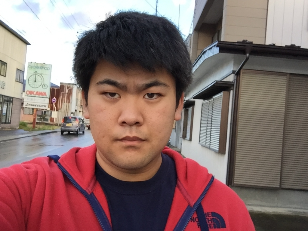 f:id:iwatenoheiwa:20171112133901j:plain