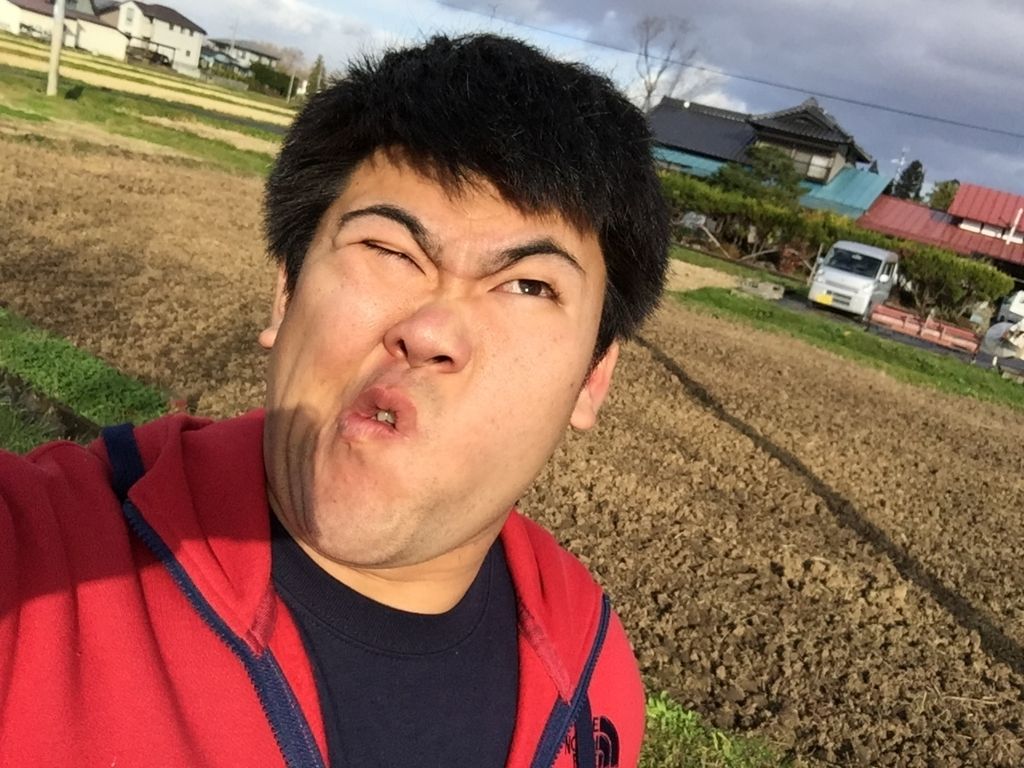 f:id:iwatenoheiwa:20171112134222j:plain