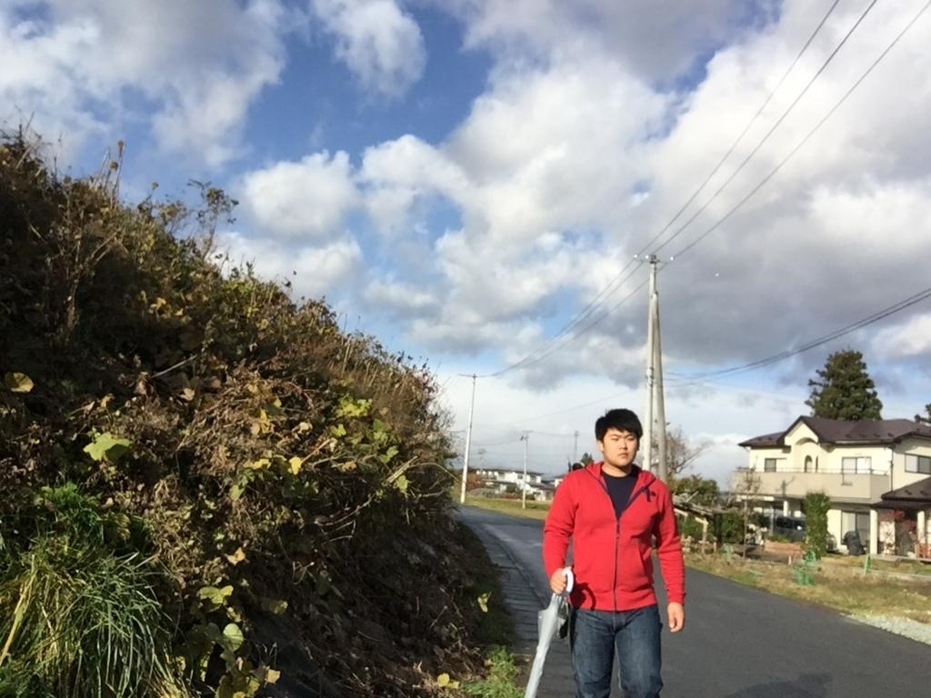 f:id:iwatenoheiwa:20171112134426j:plain