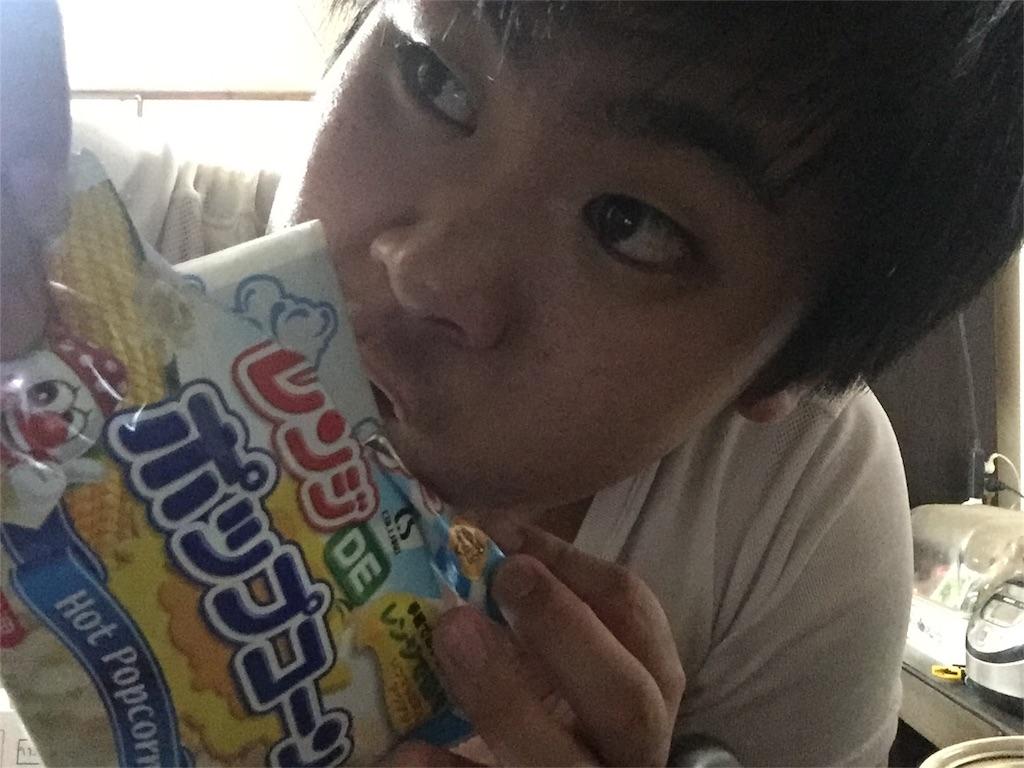 f:id:iwatenoheiwa:20180111231635j:image