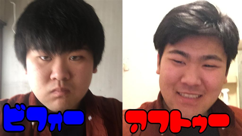f:id:iwatenoheiwa:20180120003310p:image