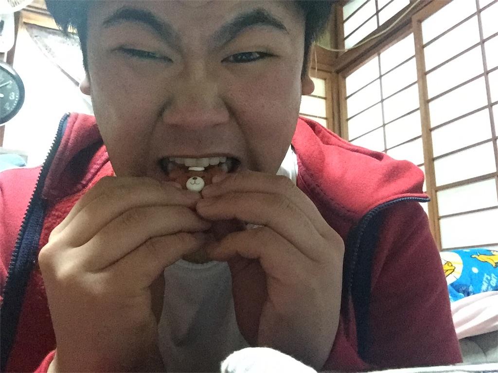f:id:iwatenoheiwa:20180129211548j:image